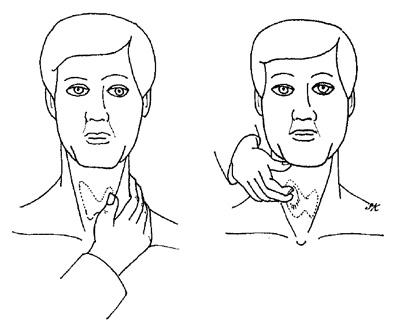Как обследовать щитовидную железу дома