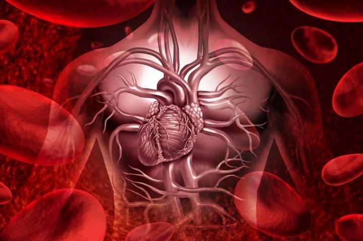 Виды пролактина в крови