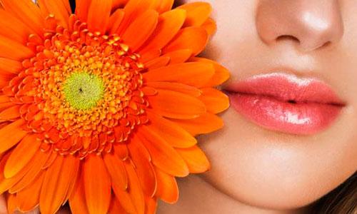 Для скорейшего выздоровления полость рта при герпесе рекомендуется несколько раз в день полоскать отварами ромашки, череды, мелиссы или полыни