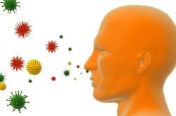 Проникновение бактерий в нос воздушно-капельным путем